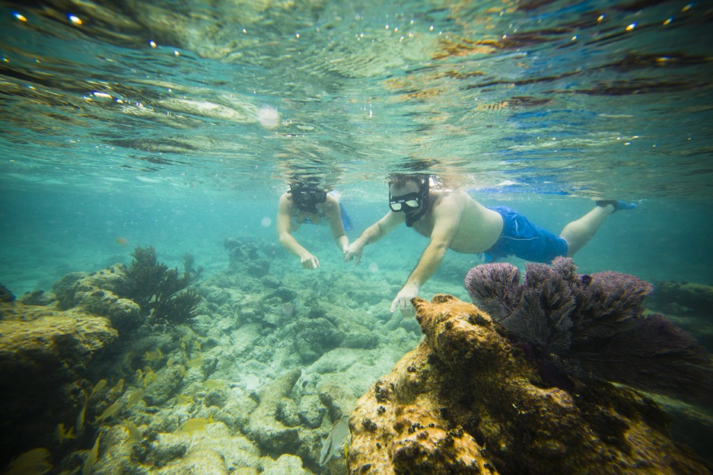 Snorkelling The Cayes Belize