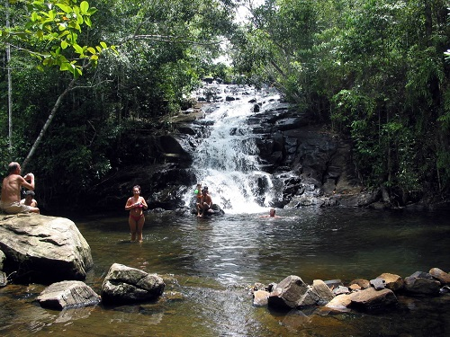 People swimming in a rainforest pool with a small waterfall behind