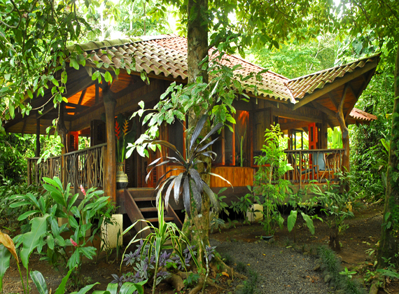 Small rustic lodge in the middle of the rainforest, surrounded by plants