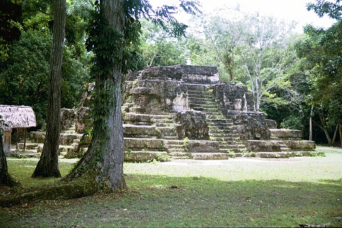 Sunny rainforest clearing with ancient Incan pyramid temple